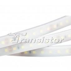 Лента светодиодная RTW 2-5000PW 24V White 2x (3528, 600 LED,LUX)