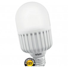 Светодиодная лампа Navigator NLL-T70-20-230-840-E27