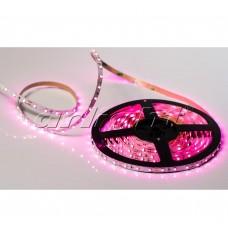 Лента светодиодная открытая Arlight RT 2-5000 12V Pink 3528