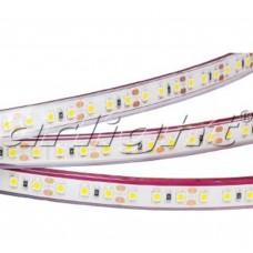Лента светодиодная герметичная Arlight RTW 2-5000PGS 12V Cool 2x (3528, 600 LED)