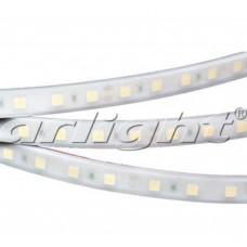 Лента светодиодная герметичная Arlight RTW 2-5000PW 24V White 2x (5060,300LED,LUX)