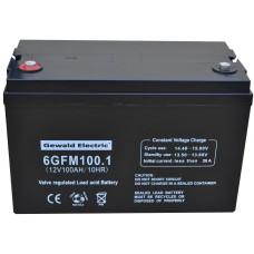 Батарейный блок 6GFM100 + бокс
